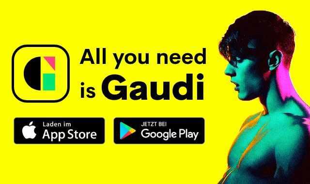 App_GaudiNFnew.jpg